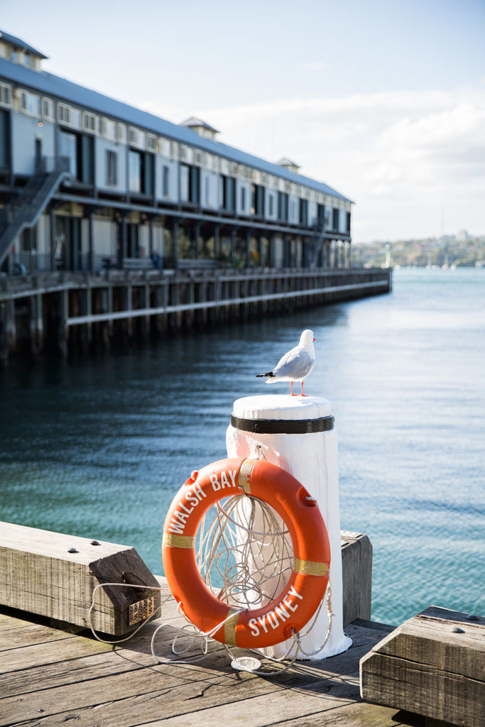 Sydney lifestyle - harbour 72