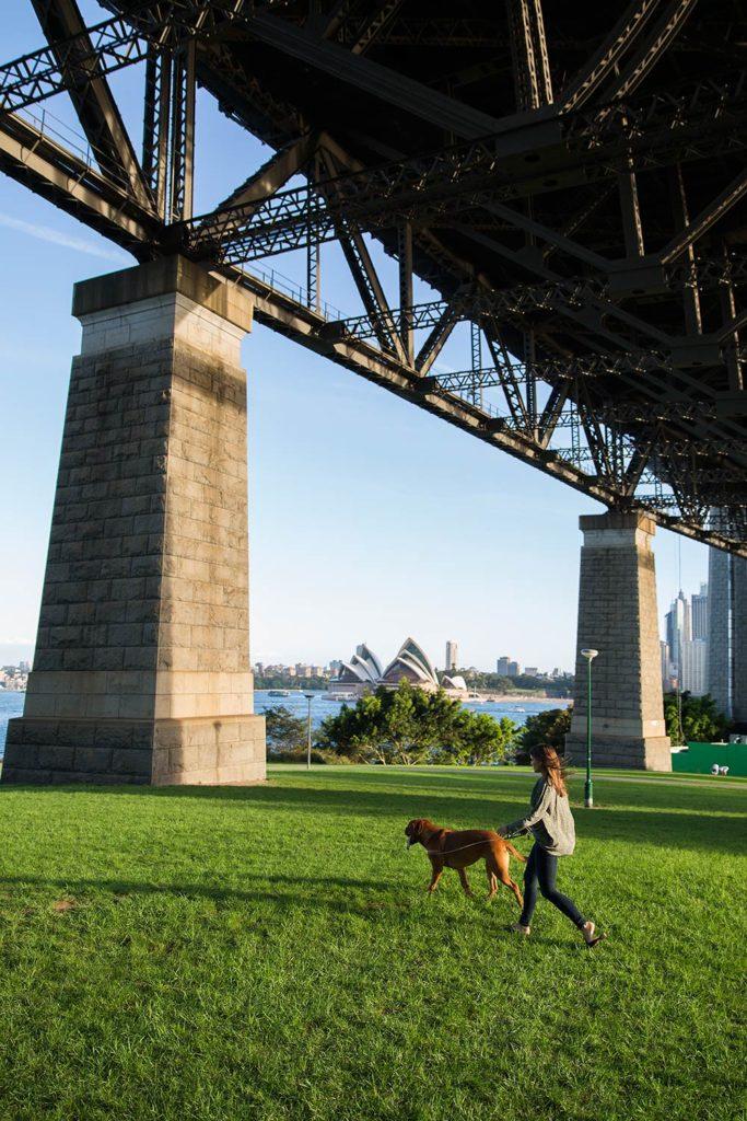 Sydney_harbour_2
